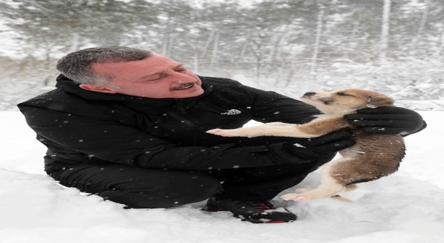Kocaeli Büyükşehir Belediye Başkanı Büyükakın, beslediği sokak hayvanlarından iki köpek yavrusunu sahiplendi