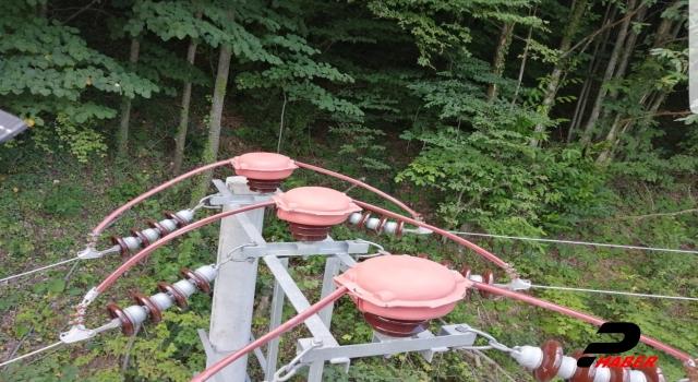 Göç yolunda elektrik direklerine tüneyen kuşlar için güvenlik önlemi