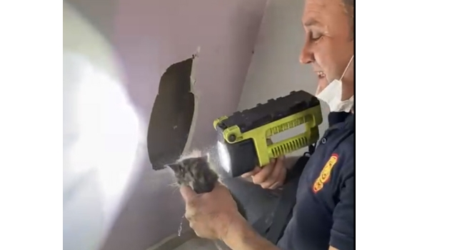 Kocaeli'de havalandırma boşluğuna düşen kedi yavrusu itfaiye ekiplerince kurtarıldı