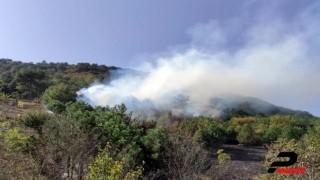 Geyve'de çıkan orman yangını kontrol altına alındı